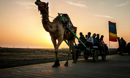 Kutch Tour Packages